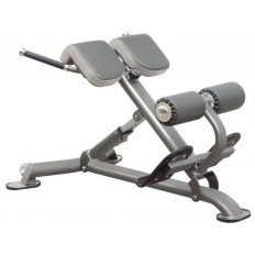 Profesjonalne urządzenie do mięśni grzbietu IT7007 IMPULSE