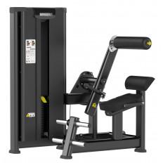 Maszyna BMM 07 mięśnie grzbietu MASTER SPORT