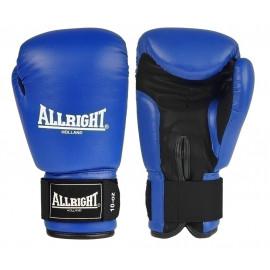 Rękawice bokserskie skóra 10 oz Allright (niebieskie)